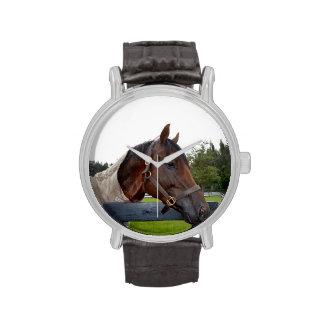 caballo sobre vista lateral de la cerca reloj