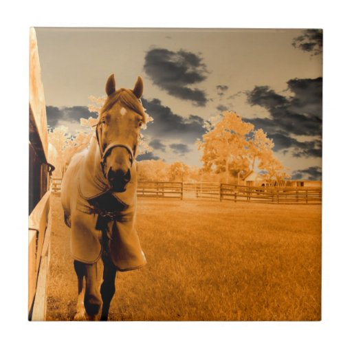 caballo surrealista que camina abajo del cielo del azulejo