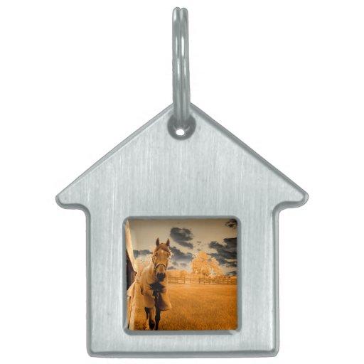 caballo surrealista que camina abajo del cielo del placa de nombre de mascota