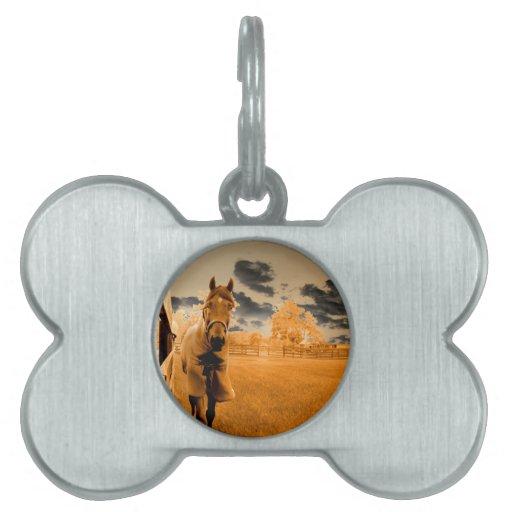 caballo surrealista que camina abajo del cielo del placas de mascota