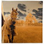 caballo surrealista que camina abajo del cielo del servilletas de papel
