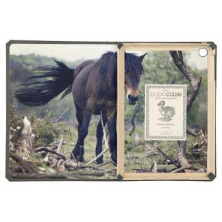 Caballo temático, caballo salvaje negro del potro