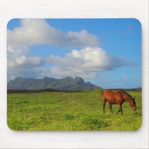Caballo Vista de Kauai Alfombrillas De Ratón