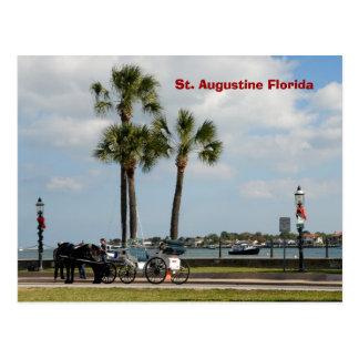 caballo y carro St Augustine la Florida Tarjetas Postales