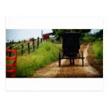 Caballo y cochecillo de Amish Postales