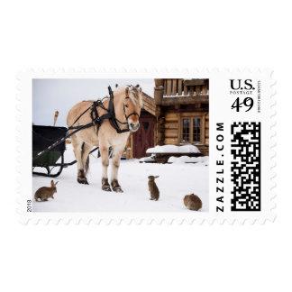 Caballo y conejos de la charla del animal del timbres postales