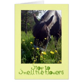 Caballo y flores tarjeta de felicitación