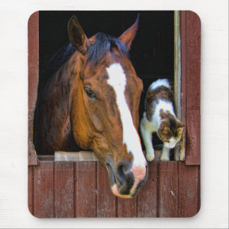 Caballo y gato mouse pads