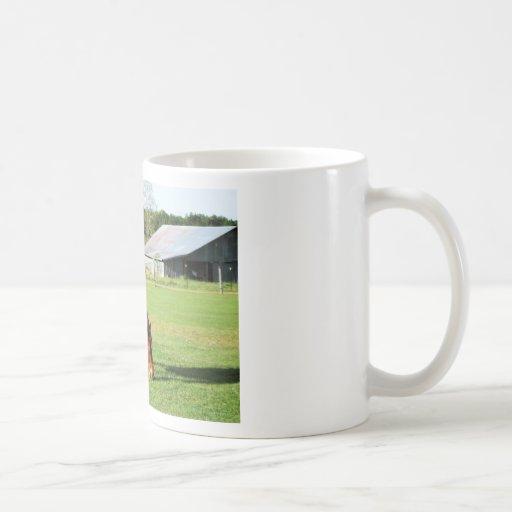 caballo y granero taza clásica