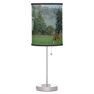 Caballo y lámpara del prado