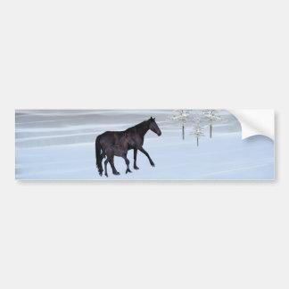 Caballo y potro en nieve pegatina para auto