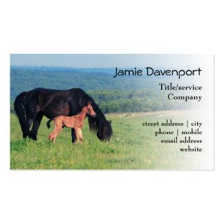 Caballo y potro en un prado tarjetas de visita