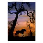 Caballo y roble equinos de la tarjeta de condolenc