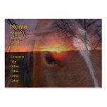 Caballo y tarjeta de visita de la salida del sol