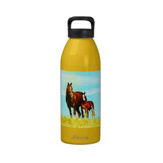 Caballos Botella De Agua