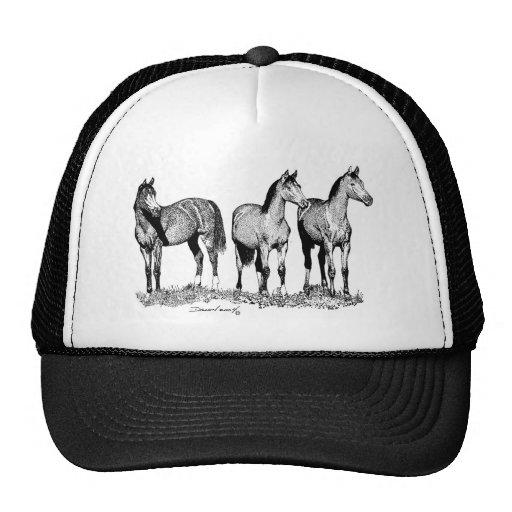 Caballos árabes gorras