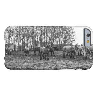 Caballos belgas blancos y negros en un pasto funda de iPhone 6 barely there