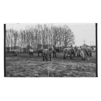 Caballos belgas blancos y negros en un pasto