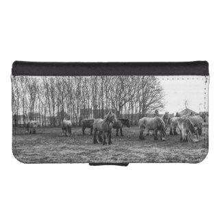 Caballos belgas blancos y negros en un pasto funda tipo billetera para iPhone 5