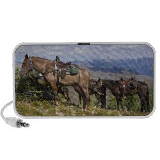 Caballos caballus del ferus del Equus en la desc iPod Altavoz