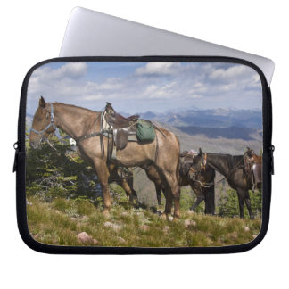 Caballos caballus del ferus del Equus en la desc Funda Portátil