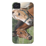Caballos Case-Mate iPhone 4 Protector