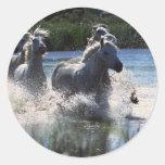 Caballos corrientes del río pegatina redonda