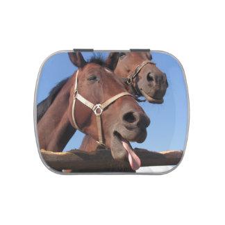 Caballos de bahía, caballo con la lengua que se jarrones de dulces