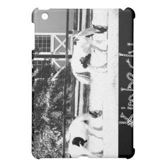 Caballos de Clydesdale que pastan el iPad (blanco