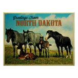 Caballos de Dakota del Norte Nokota Poster