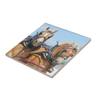 Caballos de Haflinger Azulejo Cuadrado Pequeño