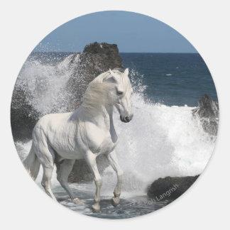 Caballos de la fantasía: Mares meridionales Pegatinas