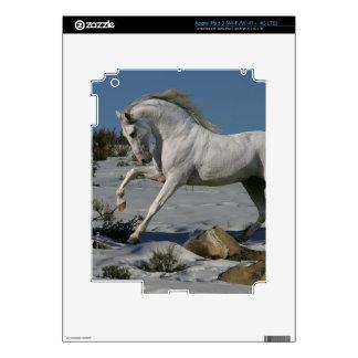 Caballos de la fantasía: Rey de la nieve Pegatinas Skins Para iPad 3