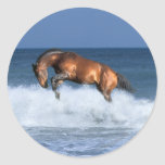 Caballos de la fantasía: Selle Francais y mar Etiquetas Redondas