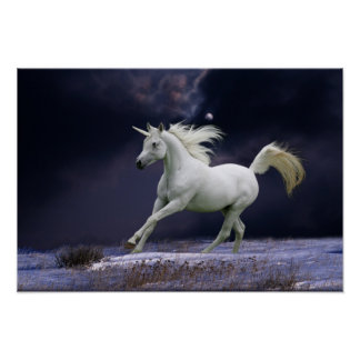 Caballos de la fantasía: Unicornio Póster