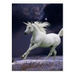 Caballos de la fantasía: Unicornio Tarjeta Postal