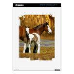 Caballos de la fantasía: Yegua y potro iPad 3 Skin