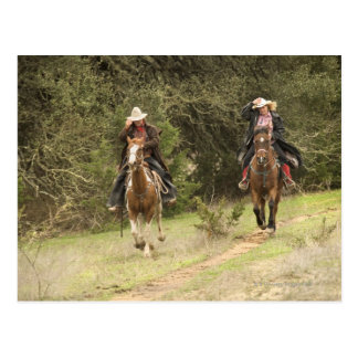 Caballos de montar a caballo de los pares del postal
