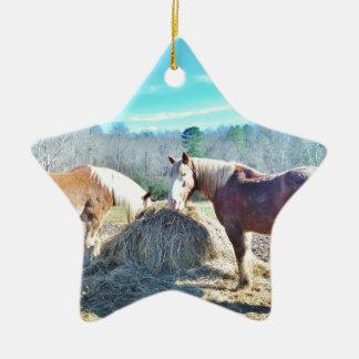 Caballos de proyecto rescatados que comen el heno adorno de cerámica en forma de estrella