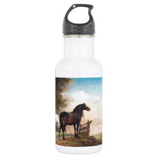 Caballos del alfarero de Paulus en un campo Botella De Agua