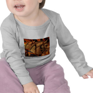 Caballos del carrusel camisetas
