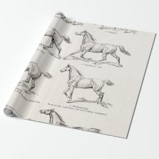 Caballos del ejemplo de los pasos del caballo de papel de regalo