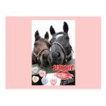 Caballos del el día de San Valentín Tarjeta Postal