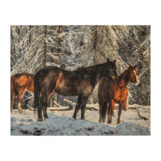 """Caballos del invierno """"año foto equina del caballo impresiones en madera"""