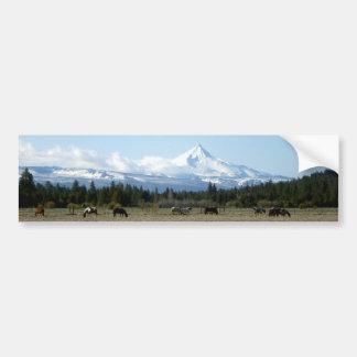 Caballos del Mt. Jefferson Etiqueta De Parachoque