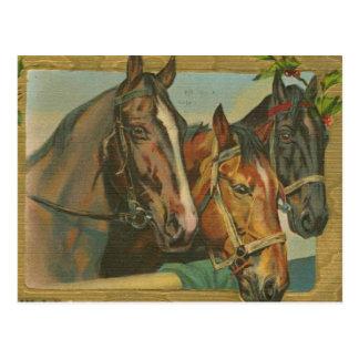 Caballos del navidad del vintage postal
