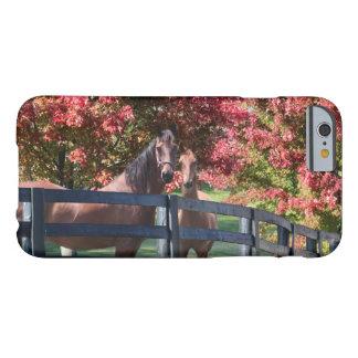 Caballos del otoño funda de iPhone 6 barely there