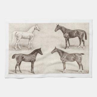 Caballos del vintage - caballo de las plantillas d toallas de cocina