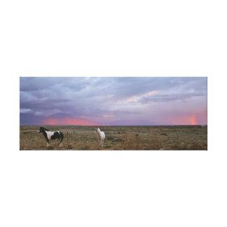Caballos después de la tormenta impresiones de lienzo