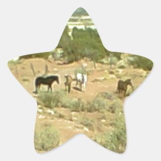 Caballos distantes colcomanias forma de estrella